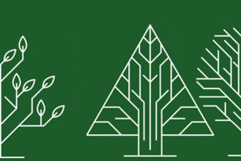 Studiuj leśnictwo w Białymstoku